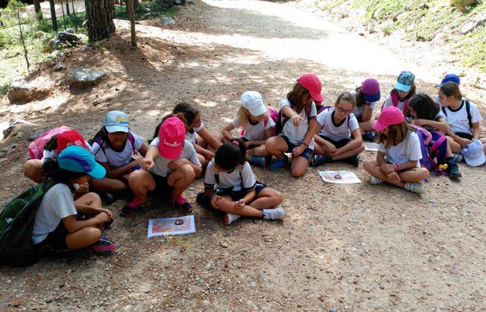 Taller de Orientación para Colegios con Dreampeaks. Actividades Colegios Madrid.