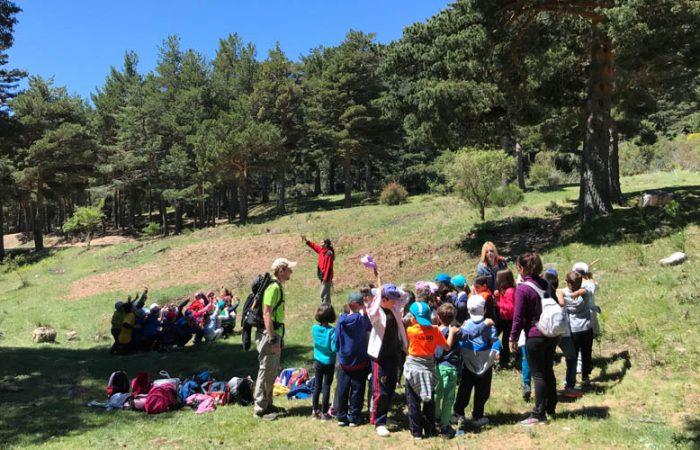 Excursiones Senderismo para Colegios en Madrid con Dreampeaks.